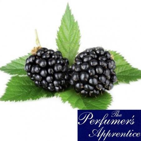 Aroma BLACKBERRY Perfumers Apprentice