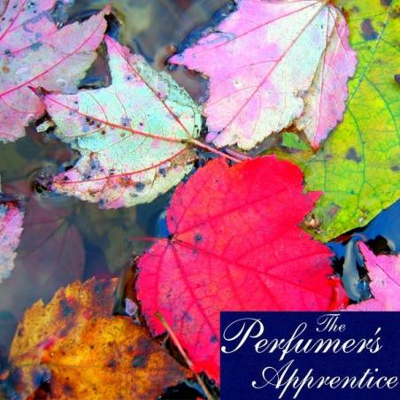 Aroma MAPPLE Perfumers Apprentice